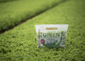 Un sacco green dimmidisi
