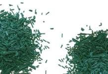 spirulina bio made in Italy