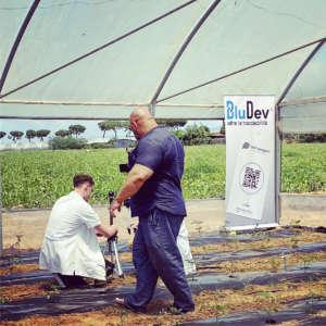 La tecnologia innovativa Bludev di Io Coltivo Italia sfrutta la blockchain
