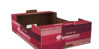 Il nuovo packaging colorato realizzato per la melagrana Spreafico made in italy