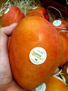 Mango siciliano a marchio Etna Mango