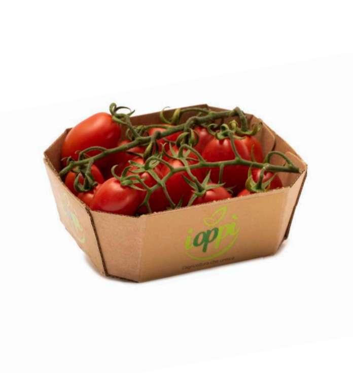 Pomodoro Ioppì, pack sostenibile con vaschetta in cartone