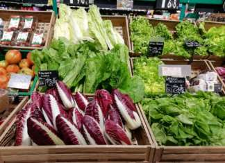 Aumentano i consumi del radicchio, +9% nel 2020