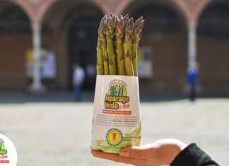 Asparago Verde Altedo igp