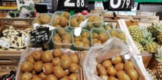 Stabili i prezzi dei kiwi: nella Gdo crescono le disponibilità dei kiwi gialli e rossi