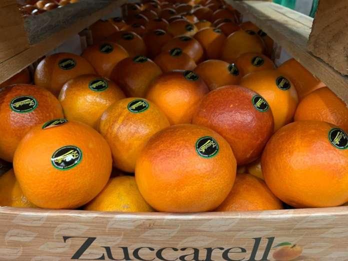 Arance a marchio Zuccarello