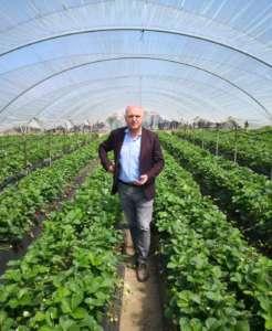 Pietro Ciardiello, direttore di Coop Sole, la cooperativa del Gruppo Vi.Va