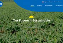 Screenshot del nuovo sito web di Fyffes