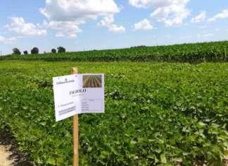 Conserve Italia investe nell'agricoltura di precisione