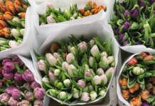 Previsioni di vendite di fiori molto positive per San Valentino