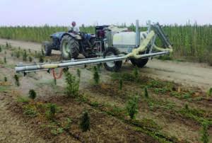 La tecnologia Oxir può essere usata per diverse colture
