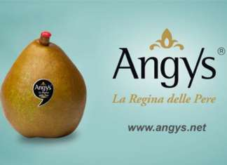 Angys Spreafico, la regina delle pere pronta a debuttare con uno spot tv