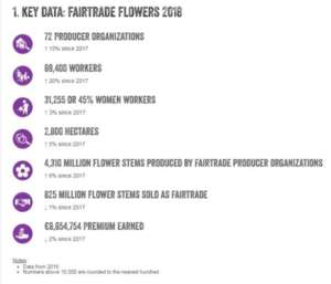 I dati dell mercato dei fiori Fairtrade