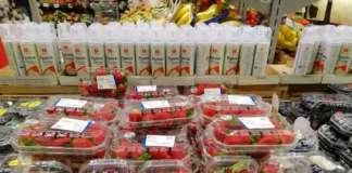 Forte la domanda di fragole, con quotazioni in rialzo