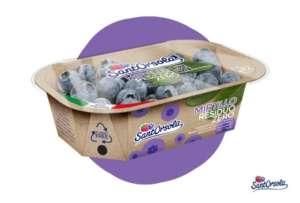 Mirtillo residuo zero Sant'Orsola nel packaging plastic free