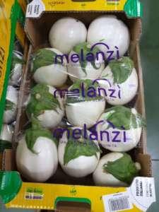 Melanzana bianca a marchio Melanzì