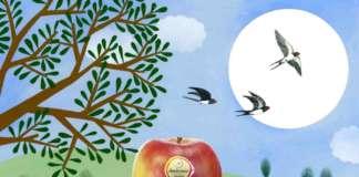 La nuova comunicazione di mela Ambrosia punta anche sui social