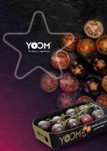 pomodoro yoom