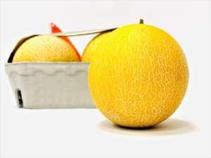 Mini melone Dipilato