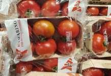 Pomodoro Kamarino nel pack compostabile