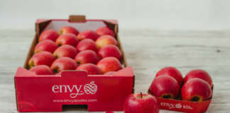 envy, la mela club supersweet commercializzata da Vog e Vip