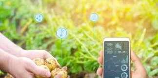 L'agricoltura digitale sta rivoluzionando il settore ortofrutticolo