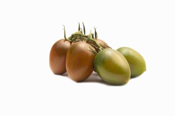La linea di pomodoro Tomachoc è fortemente distintiva