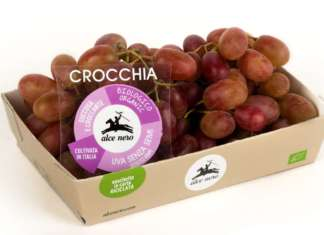 Uva Crocchia prodotta da Brio a marchio Alce Nero