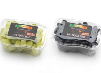 Apofruit, uva seedless bianca e nera a marchio Solarelli