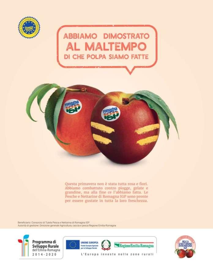 Visual della campagna di promozione Pesche e Nettarine Igp