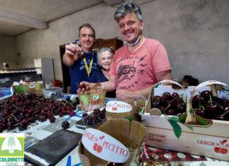 L'azienda Cascina Canape di Pecetto, in provincia di Torino, è guidata da Alberto e Giuseppe Rosso