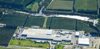 Stabilimento Unifrutti in Sudafrica per la produzione di agrumi