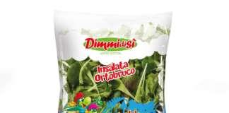 Insalata Ortobruco limited edition Dimmidisì