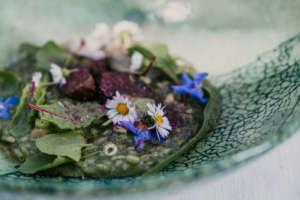 Un piatto del Ristorante Johannesstube che esalta la materia prima vegetale