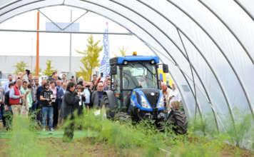 L'International Asparagus Days, a Macfrut, è il punto di riferimento della asparagicoltura mondiale
