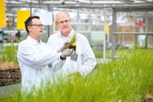 Bayer investe in ricerca e sviluppo