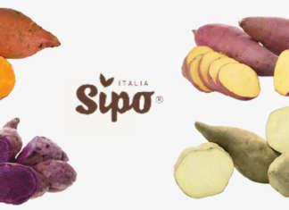 La nuova gamma di patate dolci Sipo